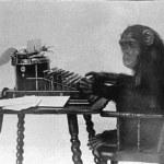 Scimmia_che_scrive