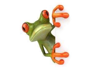 free-frog-3d-wallpaper-for-desktop_640x480_81218