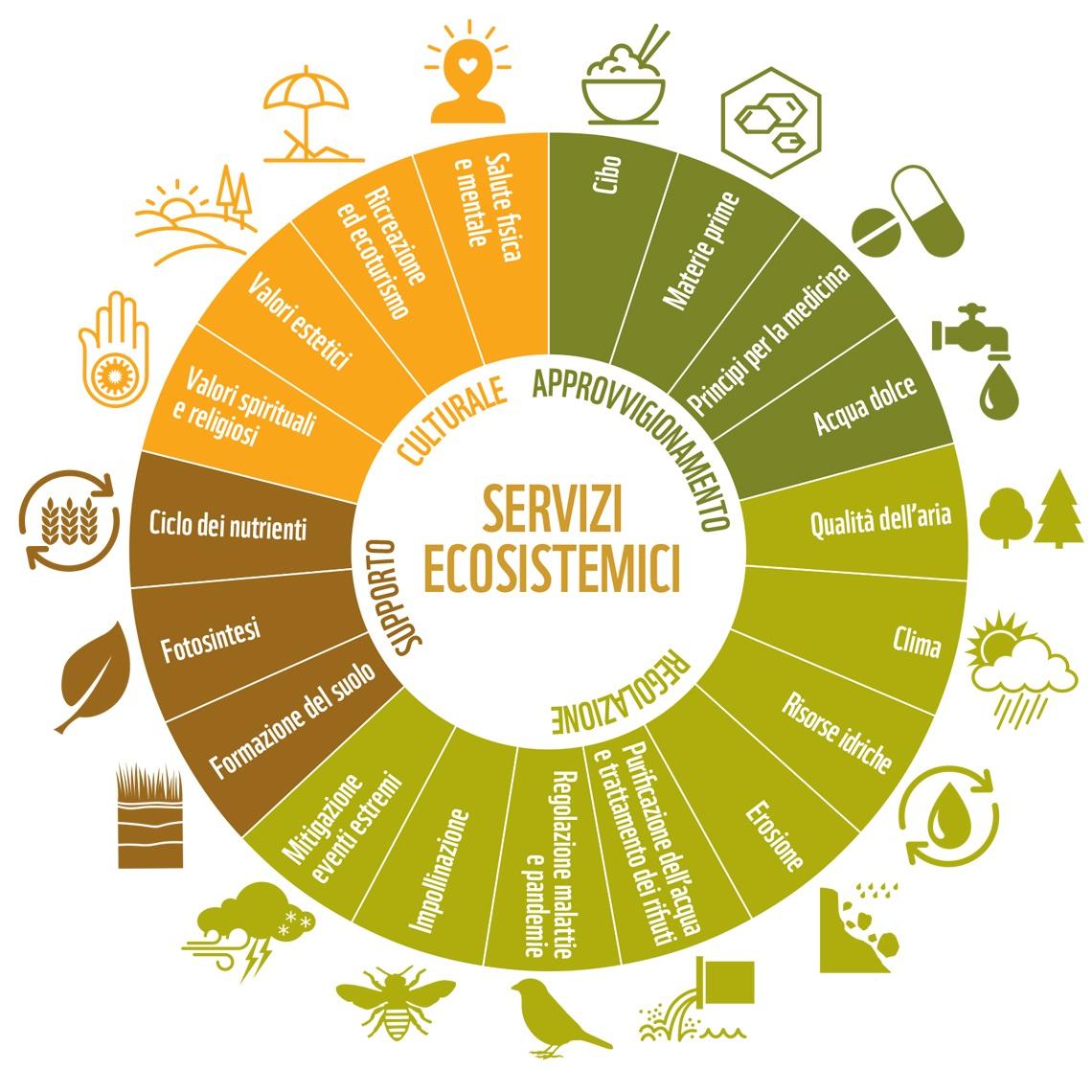 Servizi ecosistemici