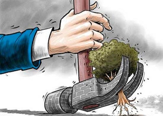 suolo_consumo_cemento